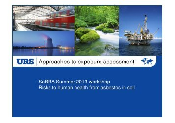 Simon Cole Asbestos Exposure Assessment Jun 2013.pdf - SoBRA