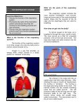 THE RESPIRATORY SYSTEM - Page 2