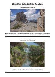 Classifica delle 20 foto finaliste - Fondazione Univerde