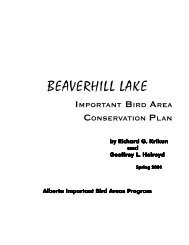 BEAVERHILL LAKE - Important Bird Areas of Canada