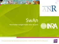 SWAN - Inra