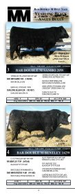 the bar double m bull sale! - Page 5