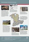 Herunterladen - Kanton Bern - Seite 5