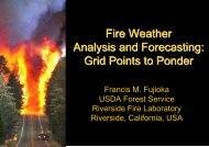 Fire Weather Analysis and Forecasting