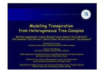 Modelling Transpiration from Heterogeneous Tree Canopies