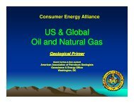 US & Global Oil and Natural Gas - Consumer Energy Alliance