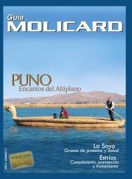 Guía Molicard Nº 11 del 2007 - Municipalidad de La Molina