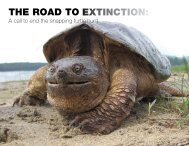 The Road To exTincTion: - Ontario Nature