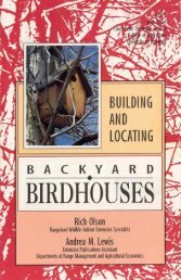 Building and Locating Backyard Birdhouses