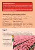 bloembollen - Certis Europe - Page 3