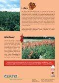 bloembollen - Certis Europe - Page 4