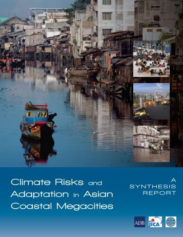 Climate risks and adaptation in Asian coastal megacities: A synthesis