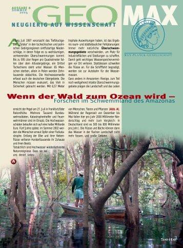 Wenn der Wald zum Ozean wird – - Scinexx