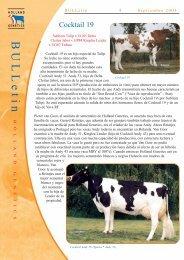 boletín toros holandeses cocktail 19 - Reproducción Animal