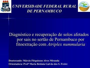seminario m f a miranda 04092009