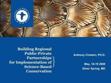 Building Regional Public-Private Partnerships for Implementation of ...