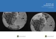 Omvärlds- och hotbildsanalys 2008 - Ekobrottsmyndigheten