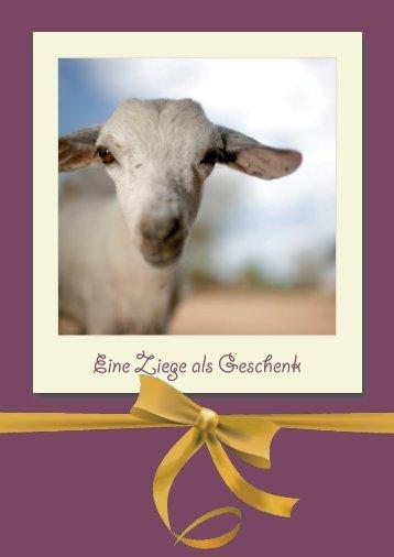 Eine Ziege als Geschenk - Tierärzte ohne Grenzen eV