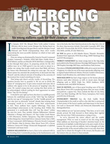 Emerging Sires - American Morgan Horse Association