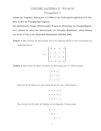 LINEARE ALGEBRA II - WS 09/10 ¨Ubungsblatt 3