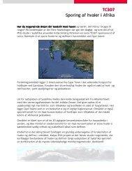 TC307 Sporing af hvaler i Afrika - Leica Geosystems