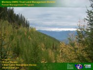 Forest Management Program - Rights and Resources Initiative