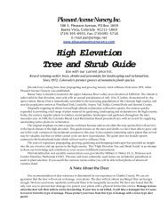 High Elevation Tree and Shrub Guide - Make Your Own Website ...