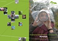 Unser Konzept (PDF) - NET eV