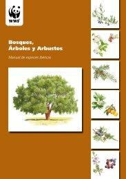 Bosques, Árboles y Arbustos - WWF