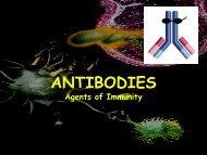 ANTIBODIES Agents of Immunity