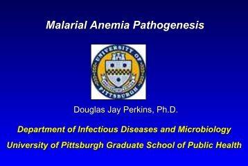 Malarial Anemia Pathogenesis