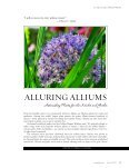 Alluring Alliums: Astonishing Plants for the ... - Seasonal Wisdom - Page 3