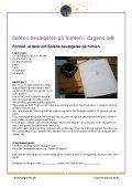 Baggrundsviden - Experimentarium - Page 3