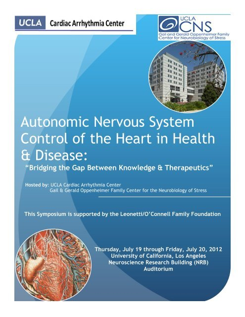 Autonomic Nervous System Control of the Heart     - UCLA Cardiology