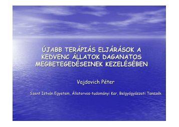 Újabb terápiás eljárások_Vajdovich_P