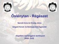Őslénytan-régészet - Előadás anyag - Szegedi Karszt