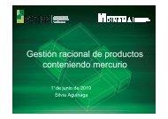 Gestión racional de productos conteniendo mercurio - Silvia Aguinaga