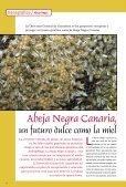 Abeja Negra - Gobierno de Canarias - Page 6