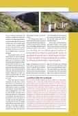 Abeja Negra - Gobierno de Canarias - Page 7