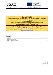 Questionnaire I, presentation of organisation