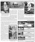 Bull Riding Come Rain or Shine - Fluvanna Review - Page 7