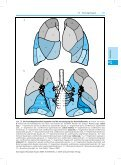 7.2.1 Trachea 7.2.2 Lungen Merke - Seite 2
