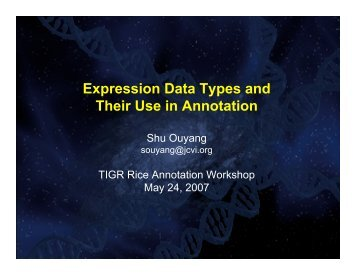 Gene Expression - Rice Genome Annotation Project