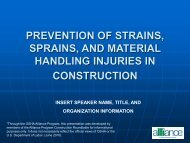 Prevention of Strains, Sprains, and Material Handling Injuries in ...