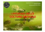 PDF (I fitofagi delle colture orticole (parte 1))