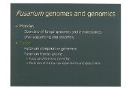 Fusarium genomes and genomics (CK)