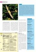 Storm Sportgerät zum Hangturnen - Seite 5