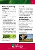 Grovfoder - DLF-TRIFOLIUM Denmark - Page 2