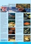 WUNDERBARE WASSERWELTEN 2011 - Seite 4