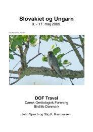 Slovakiet og Ungarn - DOF Travel